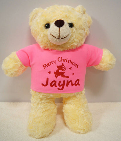 Teddy bear with pink shirt