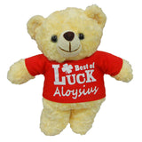 Personalised plush toy teddy bear (red shirt)