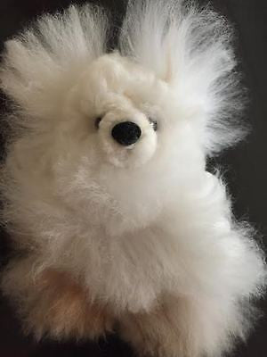 100% Baby Alpaca TINY White/Fawn Pocket-size Teddy Bear!! SOOO ADORABLE!