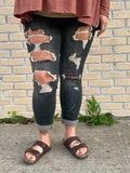 Black Distressed Judy Blue Jeans-JUDY BLUE-Sunshine Boutique Camden TN