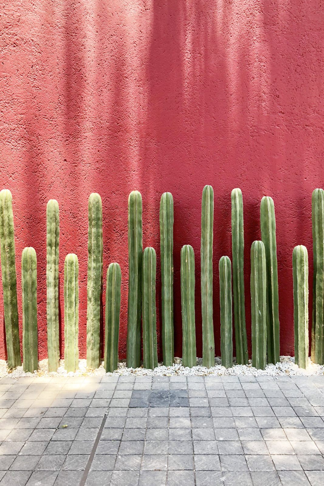 Antidote's City Guide to Mexico City