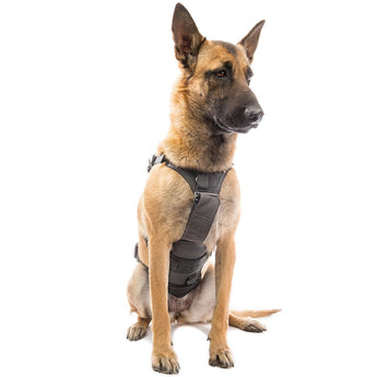 alt - Black; Eagle Industries Canine Adjustable Harness - HCC Tactical