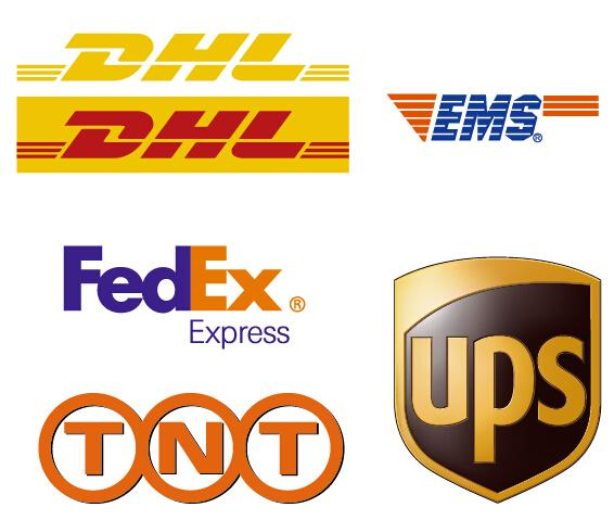 EXPEDITED SHIPPING SERVICE BY DHL/TNT/FEDEX/UPS - Leajanebag