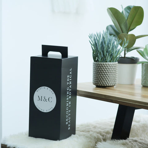 plant gift subscription