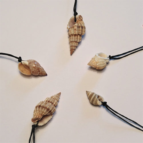 Shell cord necklace