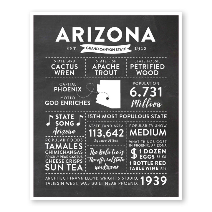 Arizona State Infographic wall art print