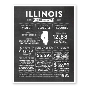 Illinois State Infographic wall art print