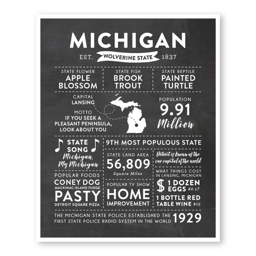 Michigan State Infographic wall art print