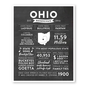 Ohio State Infographic wall art print