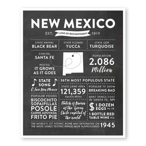 New Mexico State Infographic wall art print