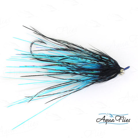 Foxall's Mini-Intruder-Black/Blue