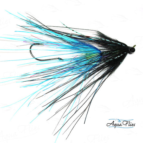 Foxall's Intruder-Black/Blue