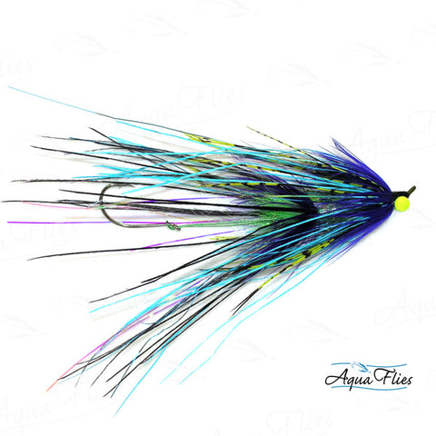 Foxall's Intruder-Blue/Purple