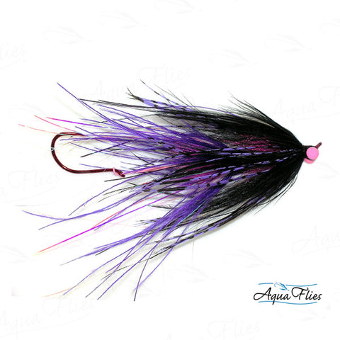 Foxall's Intruder-Purple/Black