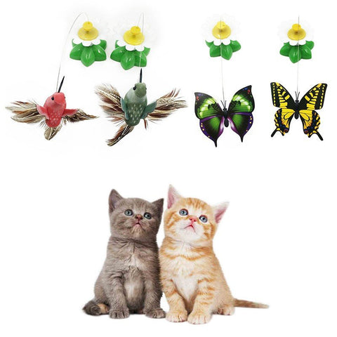 Hanging butterflies and birds toys for cats