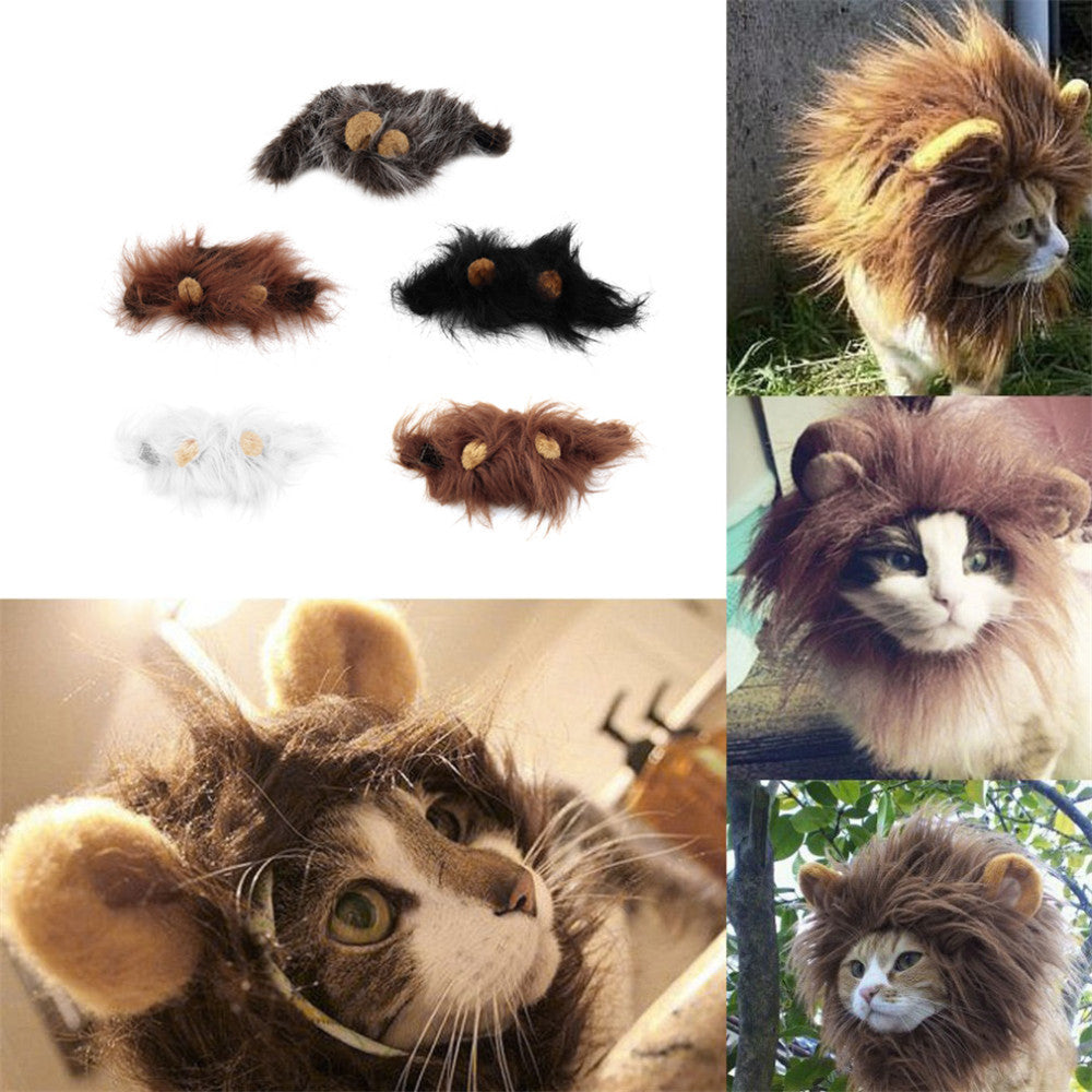 Cat Lion Hair Cap Autumn and Winter Cold Protector