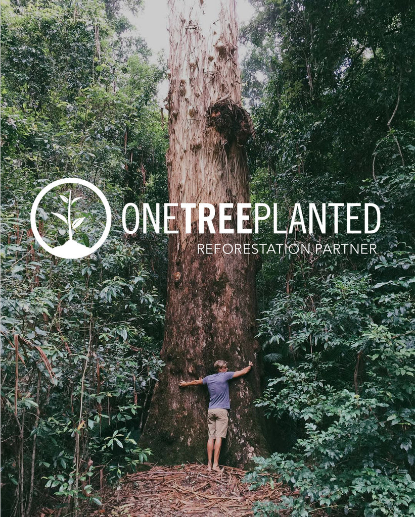 Brother Nature Announces Reforestation Partnership with One Tree Planted | Brother Nature