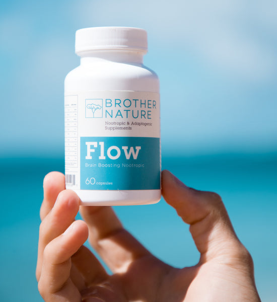 FLOW - Brain Boosting Nootropic - Brother Nature