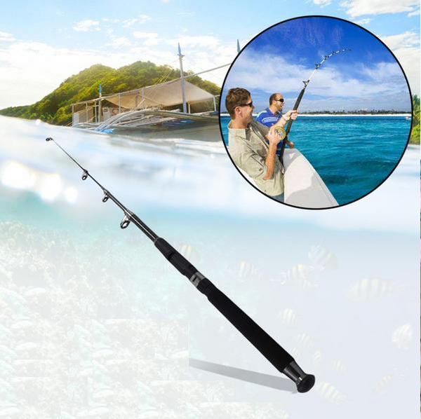 Telescopic Carobon Travel Fishing Rod