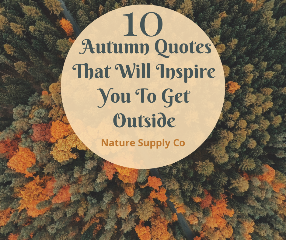 10 Autumn Quotes That Will Inspire You To Get Outside