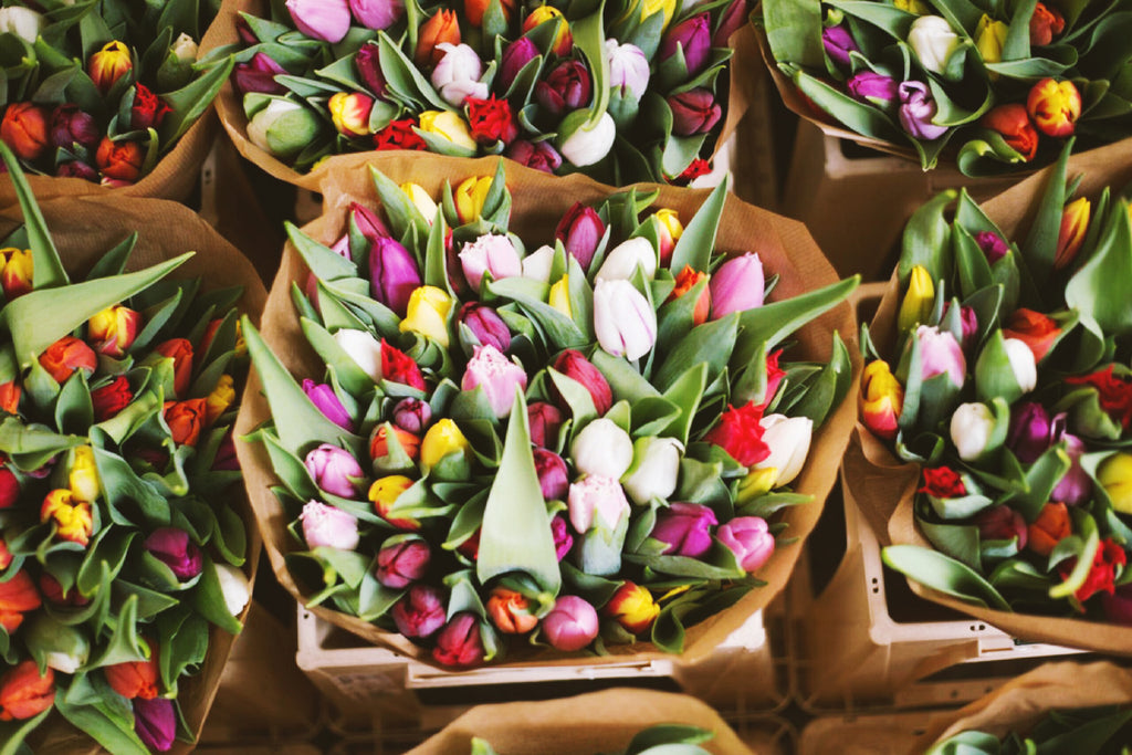 tulips, spring, flower farmer, farmer, bouquet, fresh flowers, florals, community, small business, shop local, shop small, colorful, farmers market, women who farm