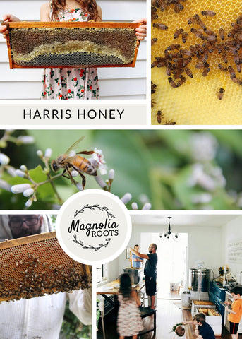 honey, beekeeper, bees, urban farm, farmer, support your local farmer, honey bees, save the bees