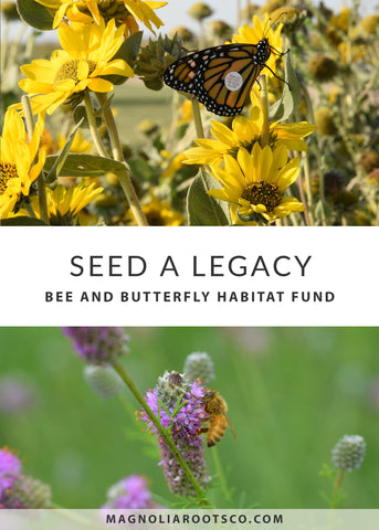 butterfly, bee, save the bees, pollinator, conservation, farming, support your local farmer, farmer, midwest, community, fund, small farmer, urban farmer, monarch