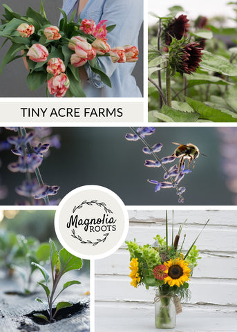 tiny acre farms, farm, women who farm, urban farm, flower farmer, florals, flowers, interview, shop small, local farmer, support your local farmer, community