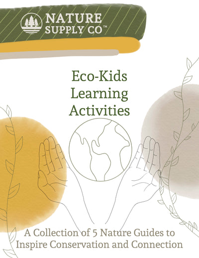 Eco-Kids Learning Collection: All 5