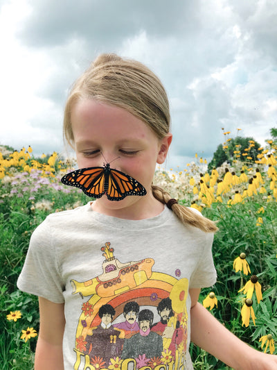 Monarchs Matter: Guide to Raising Monarchs & Other Educational Activities