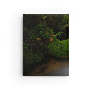 Captivate Journal (Blank) ~ A Journey Through Nature Collection