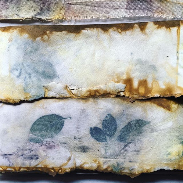 Eco-printing for self reflection 5 week course - From 19th October