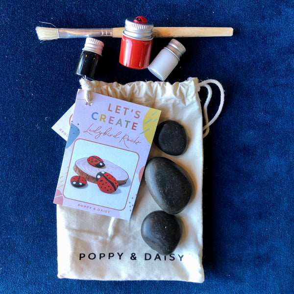 Ladybird Rocks Kit