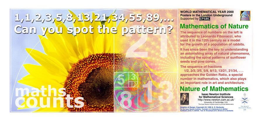 Maths Goes Underground - Maths Counts Poster