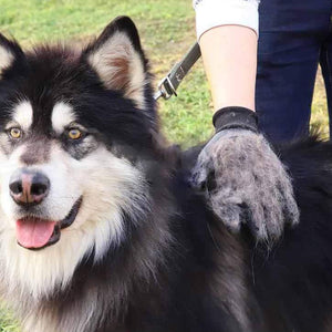 Pet Shedding Grooming Gloves for All Pets and Animal Care (One Pair)<p><b>50% OFF TODAY ONLY</b>