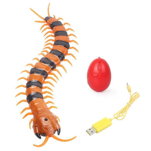 Crawly™ The Centipede Pet Toy<p><b>50% OFF TODAY ONLY</b>