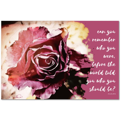 'Pink Rose' Canvas Wall Art