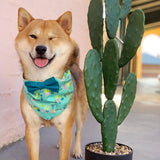 Botanical Bow Tie Dog Bandana