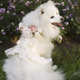 Ivory Flower Girl Dress Harness