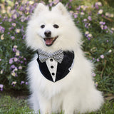 Navy Tuxedo Dog Bandana with Bow Tie