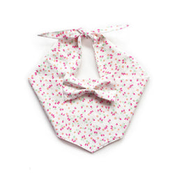Strawberry Kisses Bow Tie Dog Bandana