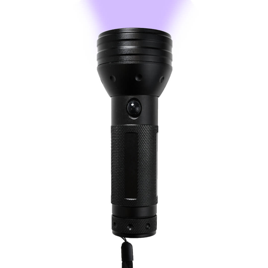 Stargazer UV Flashlight