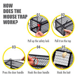 HOUZE - Mouse and Rat Trap Cage (Big) - HOUZE - The Homeware Superstore