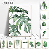Tropical Plants Art