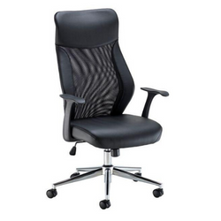 Fonseca II Task Chair with Mesh Back
