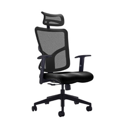 Kempes Mesh Back Task Chair with Fabric Seat