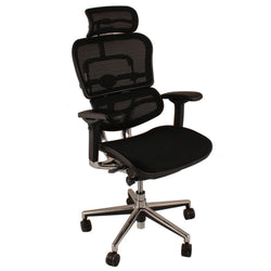 Ergohuman Plus Elite Ergonomic Mesh Chair in Black or Blue