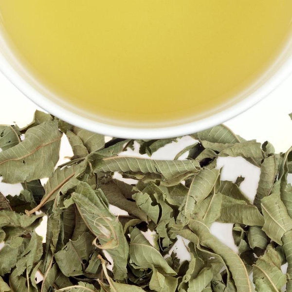 Verveine (Lemon Verbena) - Harney & Sons Teas, European Distribution Center