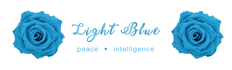 Light Blue Rose - Colour Meaning