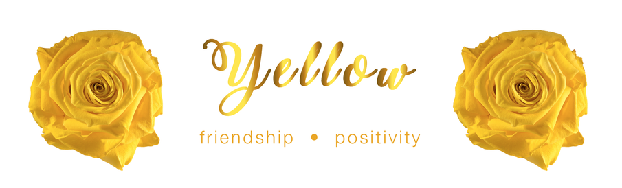 Yellow Rose - Colour Meaning